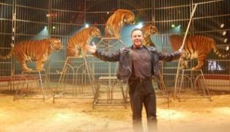 Domptage du tigre